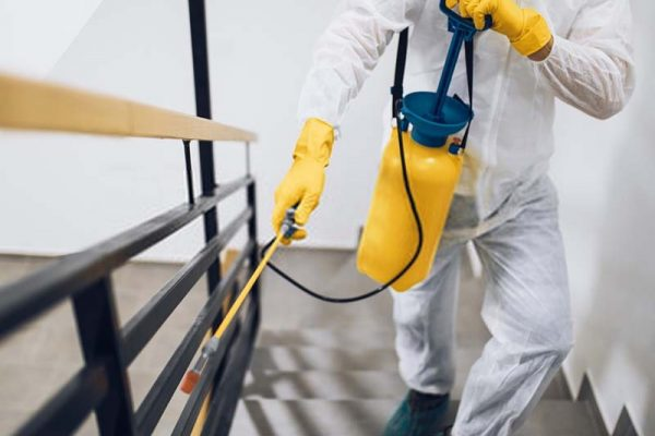 Residential Pest Control Services Feature Images